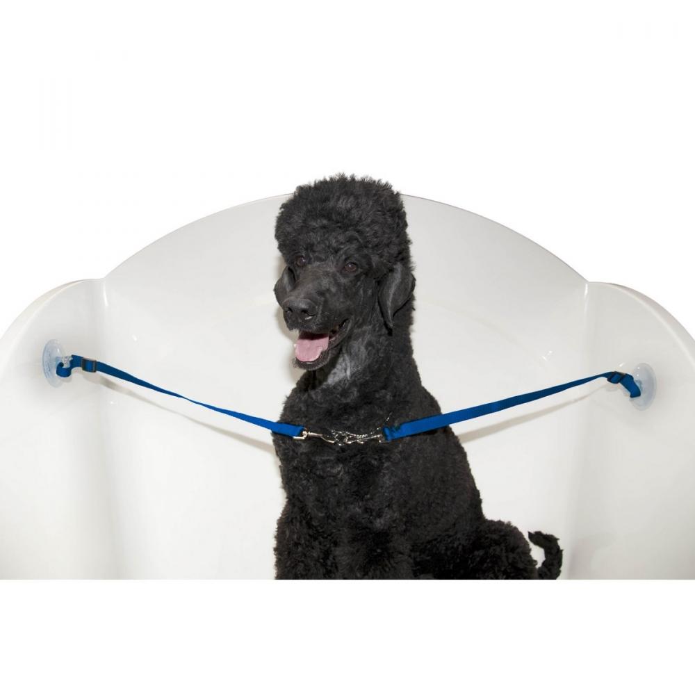 Двойной ремень для удержания собаки в ванной на присосках, Groom-X