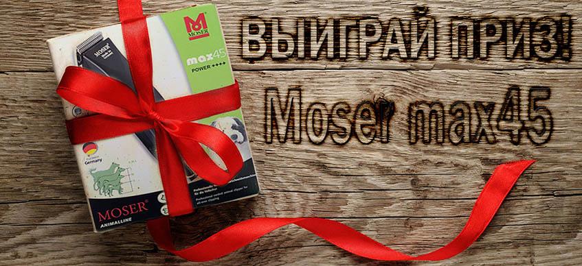 baner_moser